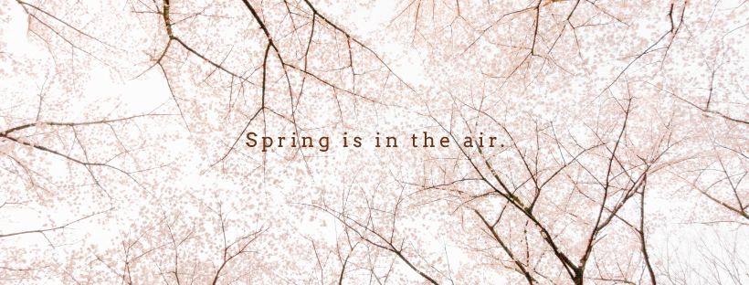 spring_covers-02